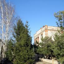 Саксаганская