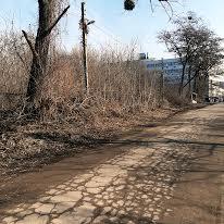 Корсиковський пров., 59