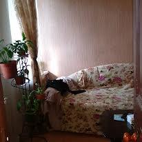 Разумовская, 25