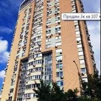 Окіпної Раїси вул., 10