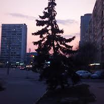 Деревлянская ул. (Якира), 20