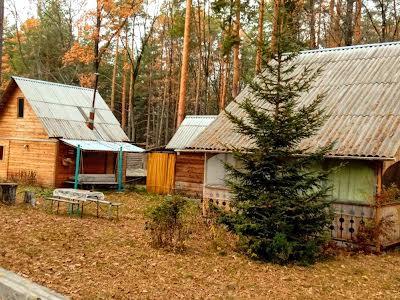 Вишгород, Ягодная