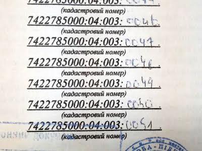 с. Кладьківка, Деснянская