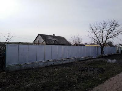 Бердянськ, С.Роза